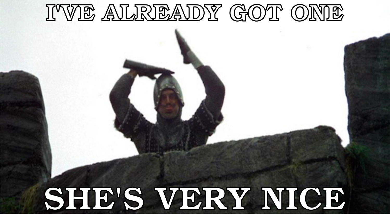 "The obnoxious French knight from _Monty Python and the Holy Grail_, making an insulting gesture, and captioned ""I'VE ALREADY GOT ONE / SHE'S VERY NICE"""
